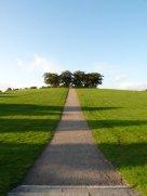 woodlands - elm hill