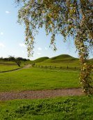 old uppsala - royal mounds