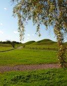 old uppsala - royal mounds