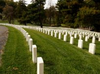 rows and rows of dead young men