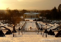 The Botanical Garden