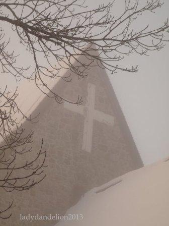 Close up through the mist