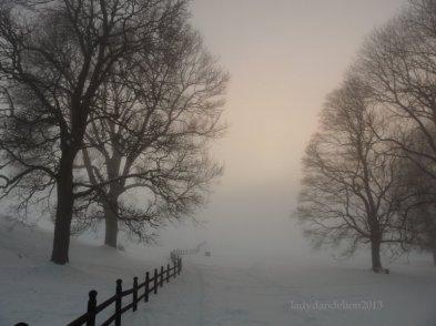 more misty road