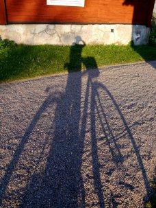 a dandelion and her bike